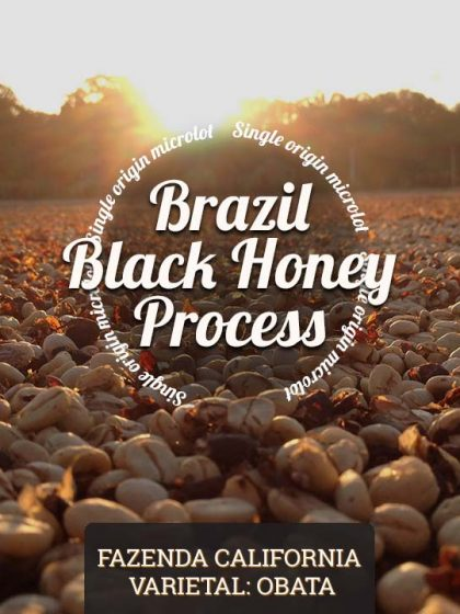 Brazil-Black-Honey